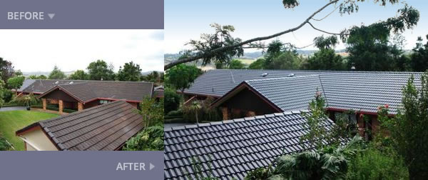 roof painting whangarei